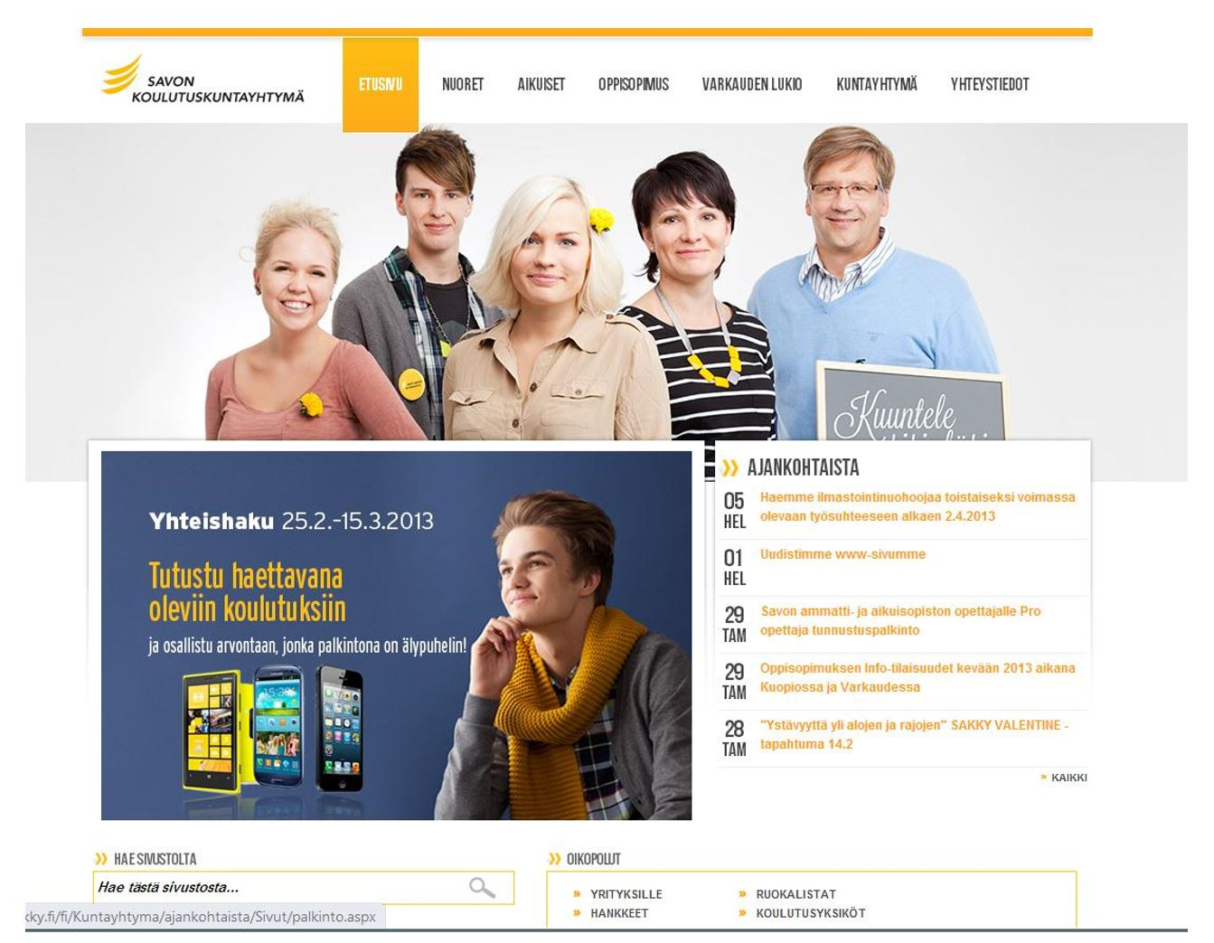 Adult education courses project in Finland - IT Outsourcing Projects